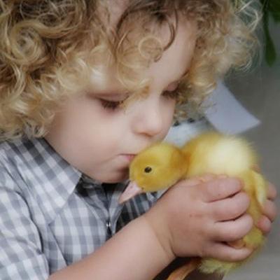 8 تاثیر مثبت نگهداری حیوان خانگی در تربیت کودک